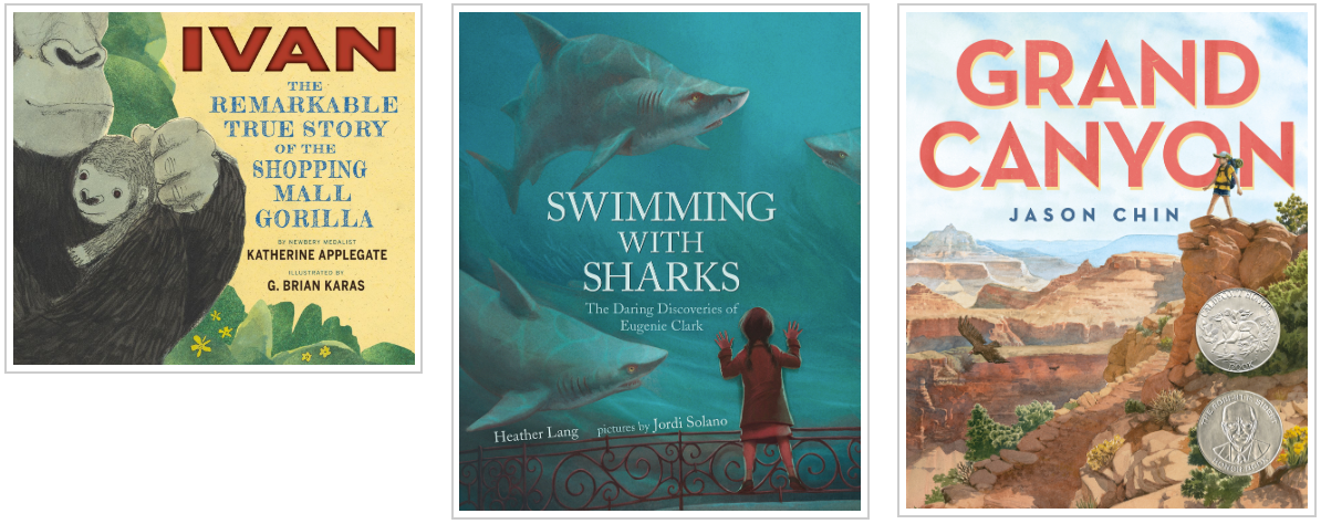 Three Books - Ivan and Swimming with Sharks and Grand Canyon