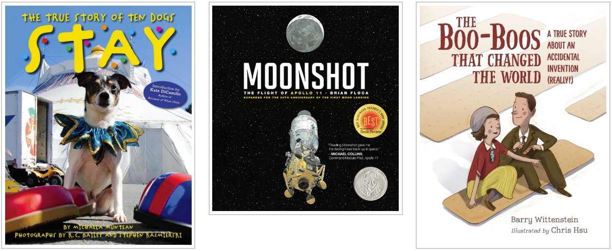 Three Books - Stay the True Story of Ten Dogs and Moonshot and The Boo-Boos that Changed the World