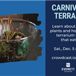 Virtual Carnivorous Terrariums workshop, Saturday Dec 5 at 10:30 AM on crowdcast.